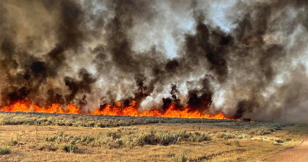 Fire Crews Continue to Battle Painter Fire near Evanston