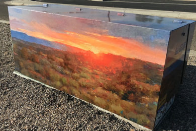 Wrapping the Community in Art, One Box at a Time