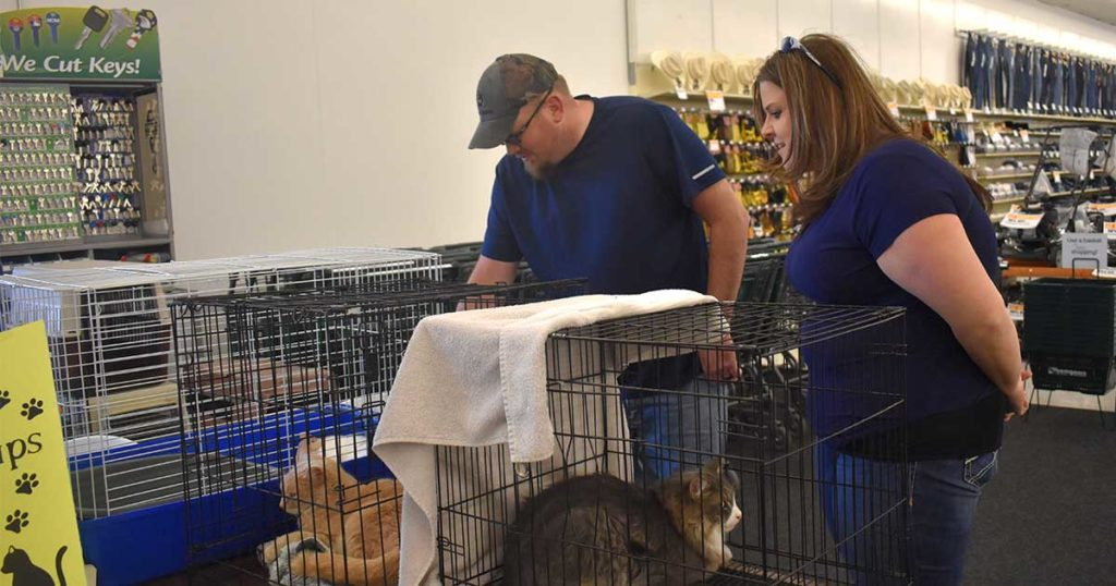 Green River Animal Control's Adoption Event is a Great Success