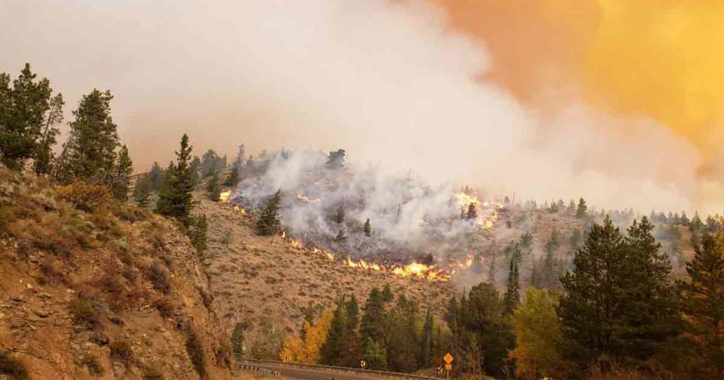 More Firefighters Respond to Mullen Fire, Only 2 Percent Contained