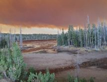 "Mullen Fire Has Grown 10,000 Acres in 24 Hours, ""Very Close' to Rob Roy Reservoir"