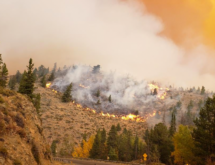 State Resources Directed by Governor Gordon to Provide Support on Mullen Fire