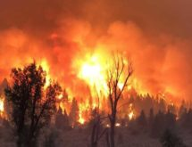 Strong Winds and Smoke Force Crews to Pull Back from Mullen Fire Saturday Night