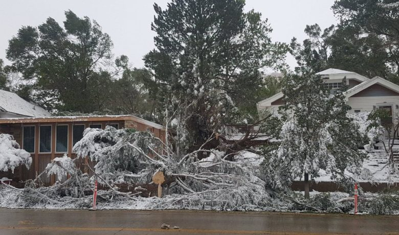 Rocky Mountain Power Working to Restore Power to Estimated 185K Customers After High Winds and Gusts