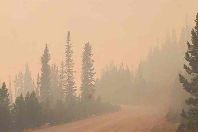 VIDEO: Mullen Fire Progression Video Released