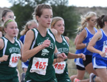 Wolves Finish in Top 10 at State Cross Country