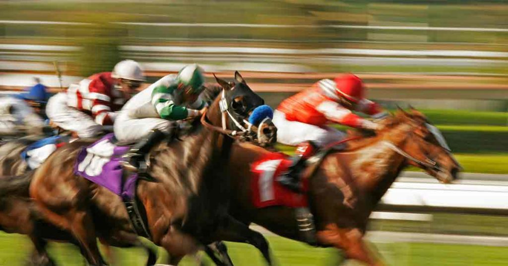 Euthanized Racing Horses' Toxicology Reports Are Normal