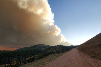 No New Growth on Mullen Fire