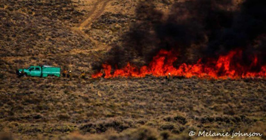 Mullen Fire Behavior Minimal Tuesday; Crews Cautious Due to Strong Winds