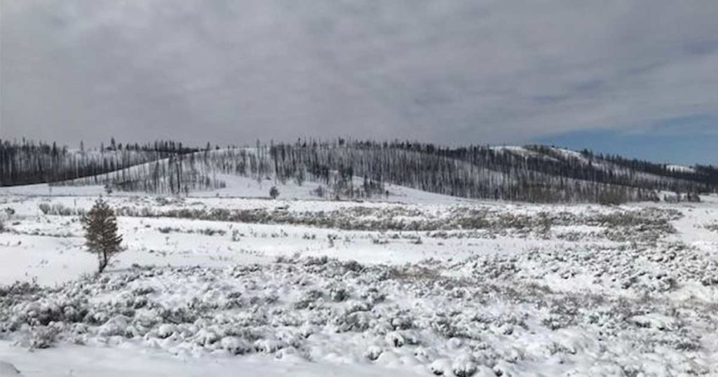 Snow Storm Cools Mullen Fire, Still Burning; Little to No Growth Expected