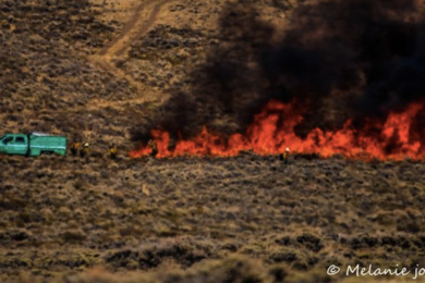 Mullen Fire Grows to 136,840 Acres, 6 Percent Contained