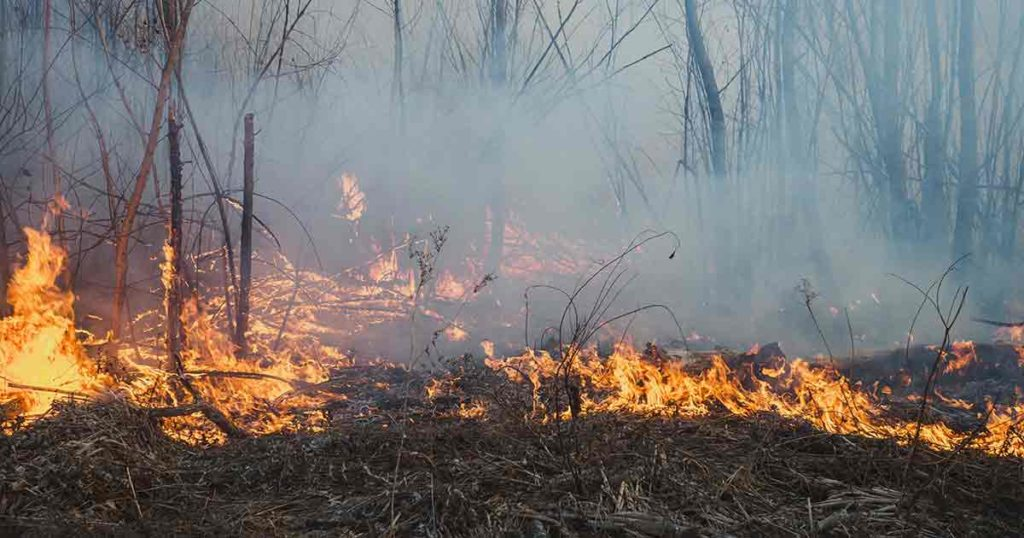 Fire Restrictions Lifted in Uinta County
