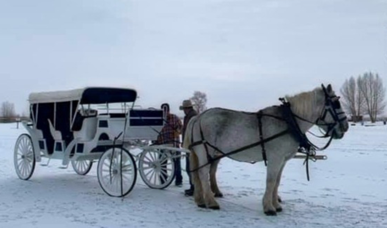 Free Carriage Rides Announced in Downtown Rock Springs