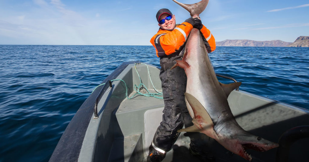 Mystery Freshwater Shark Caught in Wyoming at Flaming Gorge Reservoir