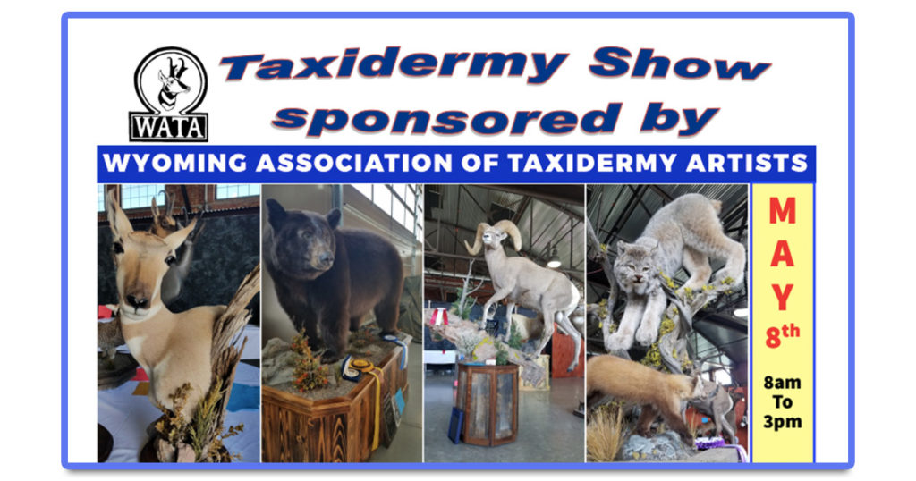 Don't Miss The Sublette County Taxidermy Show!