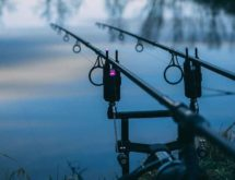 Virtual Meeting to Address Proposed Fishing Changes, Boating Regulations
